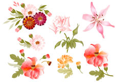 Färgillustration av blommor i vektormålningar Stock Illustrationer