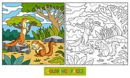 Färgläggningbok (den malde ekorre, xerusen) Royaltyfria Foton