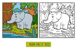 Färgläggningbok, elefant och bakgrund vektor illustrationer