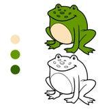 Färgläggningbok för barn (grodan) Royaltyfri Bild