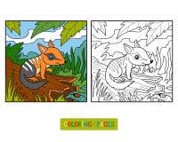 Färgläggningbok för barn, Numbat royaltyfri illustrationer