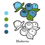 Färgläggningbok: frukter och grönsaker (blåbär) Arkivbilder