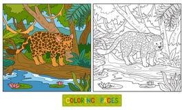 Färgläggningbok (jaguar) vektor illustrationer