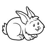 Färgläggningbok (kanin) stock illustrationer