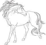 Färgläggningbok med en häst stock illustrationer