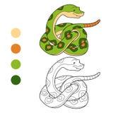 Färgläggningbok (ormen) Arkivbild