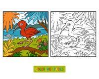 Färgläggningbok, scharlakansröd ibis vektor illustrationer