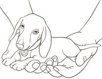 Färgläggningbok, sida för vuxna människor och barn ett gulligt pupy i händerna Linje Art Style Illustration Royaltyfria Bilder