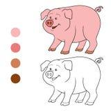 Färgläggningbok (svinet) royaltyfri illustrationer