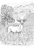 Färgläggninghjortar med horn på kronhjort stock illustrationer