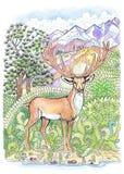Färgläggninghjortar med horn på kronhjort Arkivbilder
