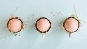 Färglösa naturliga easter ägg i espressokoppar; lyckligt easter begrepp; grön minimalist easter Arkivbild