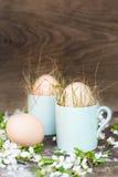 Färglösa naturliga easter ägg i gröna espressokoppar, det lyckliga easter begreppet med den vita våren blommar Royaltyfri Bild
