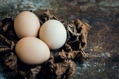 Färglösa naturliga easter ägg, lyckligt easter begrepp, retro easter Arkivfoto