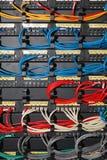 Färgnätverkskablar arkivfoto