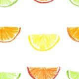 Färgpenna dragen citrus sömlös modell Arkivfoto