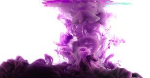 Färgpulver bevattnar in Royaltyfri Fotografi