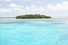 Färgrik ö med träd på havet arkivfoton