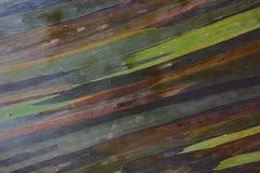 Färgrik abstrakt modell Arkivfoto