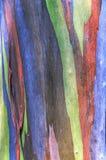 Färgrik abstrakt modell Arkivbild