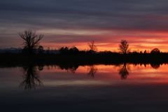 Färgrik aftonhimmel och träd på sjön Pfaffikon arkivbild