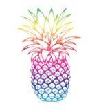 Färgrik ananas skissar isolerat på vit bakgrund stock illustrationer