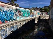 Färgrik avkloppkonst i Chilpancingo Mexico arkivfoto