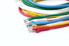 Färgrik bakgrund för vit för LAN för UTP Ethernetkablar Royaltyfri Bild