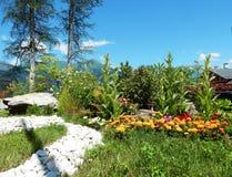Färgrik bergträdgård Arkivfoto