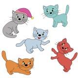 färgrik bild för katter Royaltyfri Foto