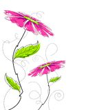 färgrik blomma Royaltyfri Bild