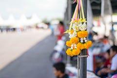 Färgrik blomma för girland royaltyfri foto