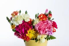 Färgrik blomma på vit bakgrund Arkivbild