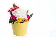 Färgrik blomma på vit bakgrund fotografering för bildbyråer