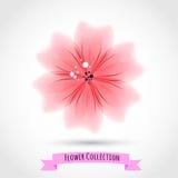 Färgrik blomma som isoleras på vit stock illustrationer