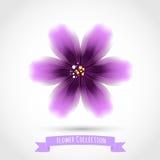 Färgrik blomma som isoleras på vit royaltyfri illustrationer