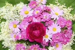 Färgrik blommabakgrund med rosa rosor, tusenskönor Arkivfoto