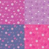 Färgrik blommabakgrundsuppsättning Royaltyfria Bilder