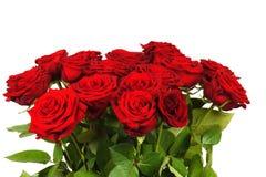 Färgrik blommabukett från isolerade röda rosor Royaltyfri Bild