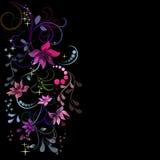 Färgrik blommadesign Royaltyfri Fotografi