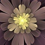 färgrik blommafractal Royaltyfri Bild