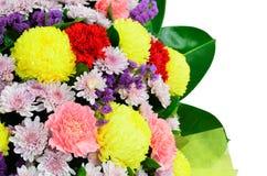 Färgrik blommagarnering Fotografering för Bildbyråer