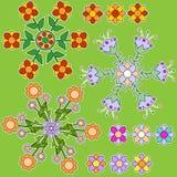 Färgrik blommaprydnadsamling Arkivfoton