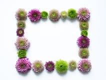 färgrik blommaram Arkivfoto