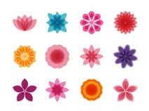 Färgrik blommasymbolsuppsättning Royaltyfria Bilder