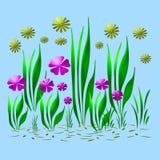 färgrik blommaträdgård Royaltyfria Bilder