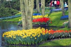 färgrik blommaträdgård arkivbilder