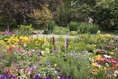 färgrik blommaträdgård Arkivfoton