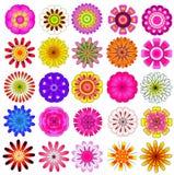 Färgrik blommavektoruppsättning Arkivfoton