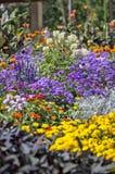 Färgrik blomsterrabatt i en park Arkivfoton